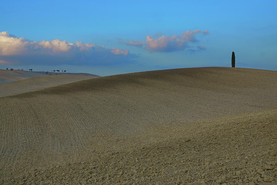 Sun Photograph - The Darkening Of The Slopes Of Tuscany by Oleksandr Chernii