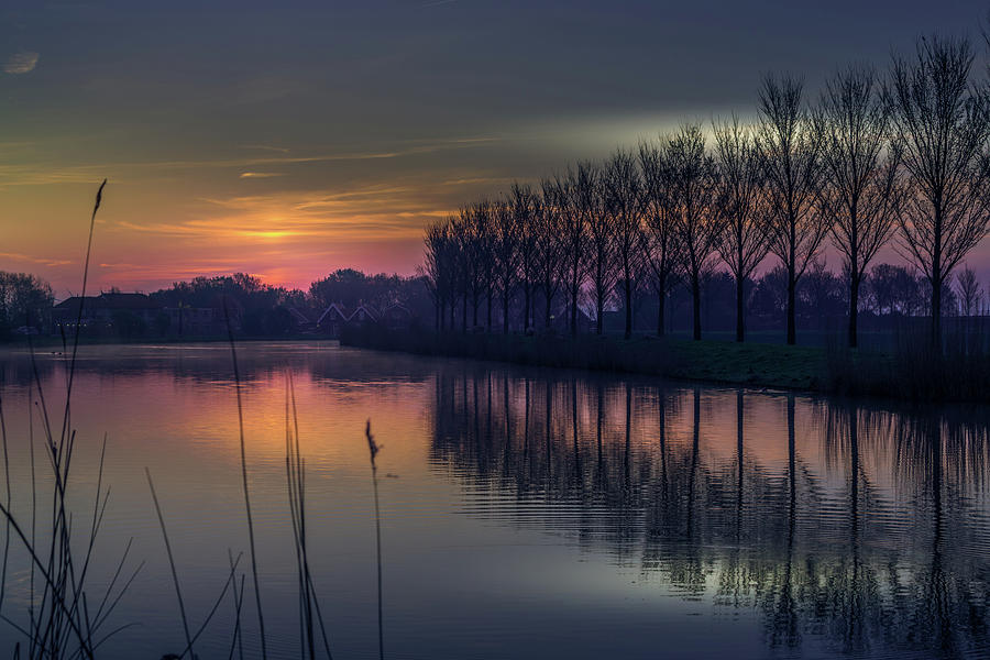 The day begins by Susan Leonard