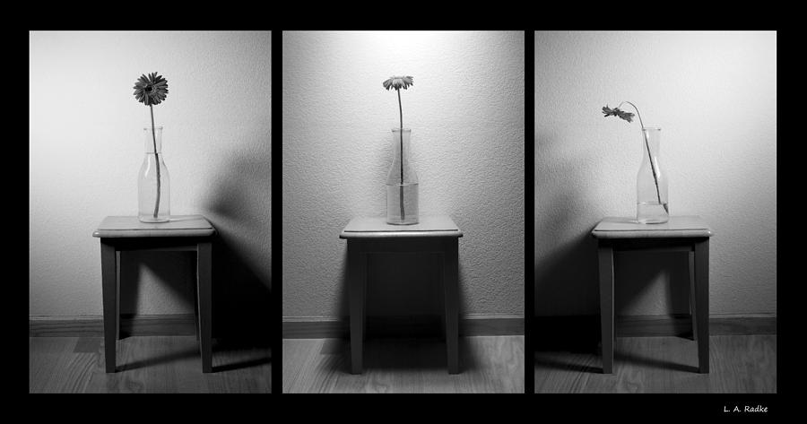 Triptych Photograph - The Day Goes By - Dawn Til Dusk by Lauren Radke