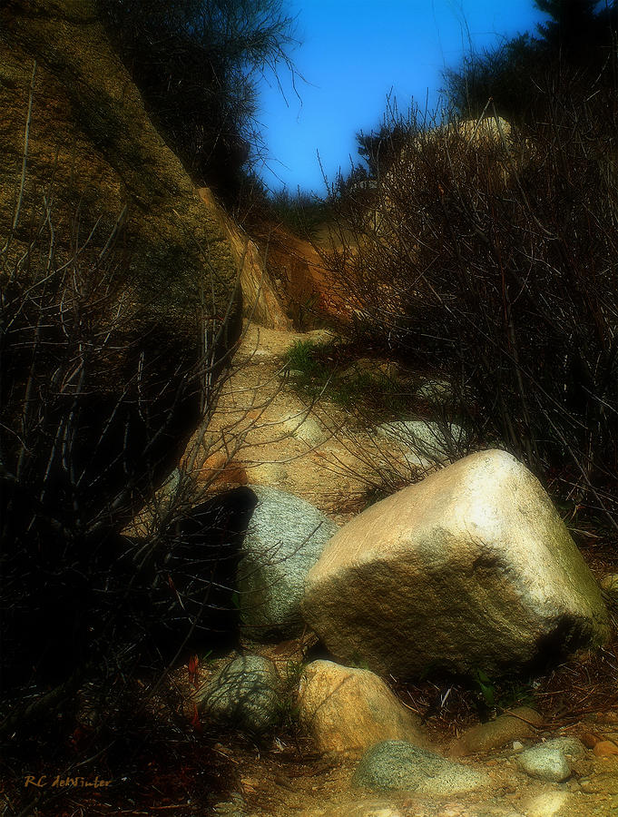 Beach Photograph - The Delicacy Of A Summer Night by RC DeWinter