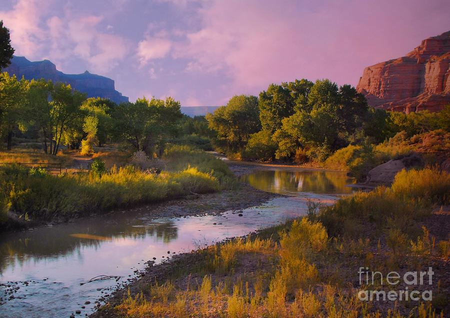 Yellow Digital Art - The Delores River At Gate Way Colorado by Annie Gibbons
