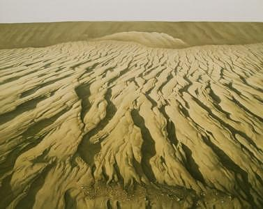 Landscape Artist Painting - The Desert Land by Shuguang Liu