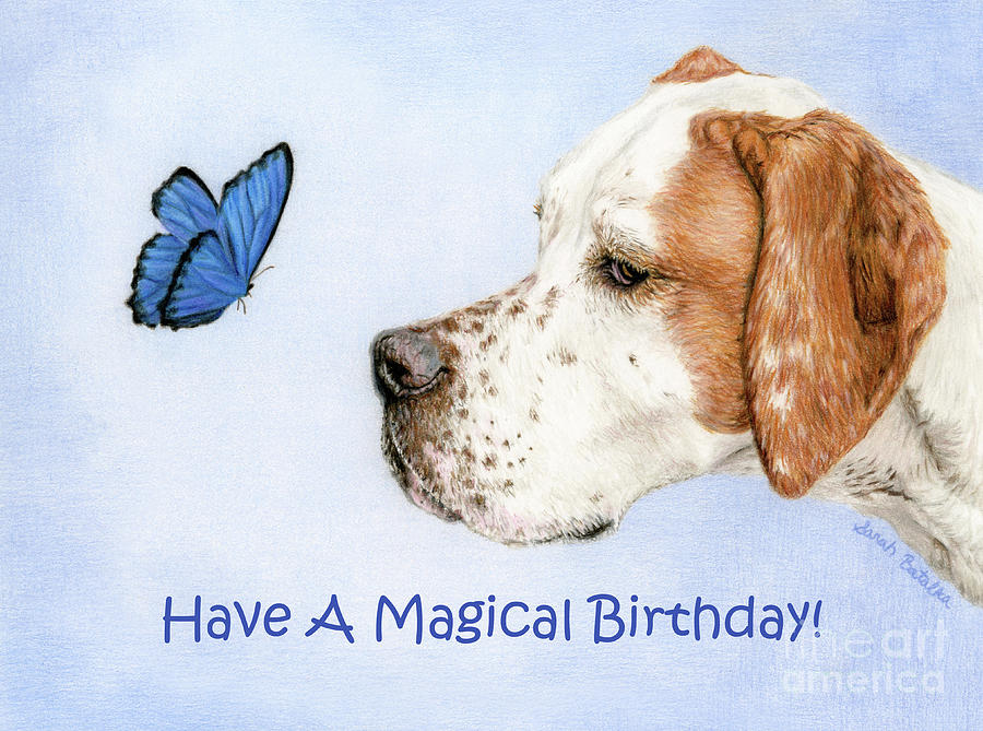 The Dog And Butterfly Birthday Cards By Sarah Batalka