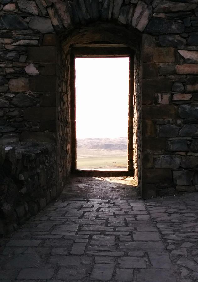The Door by Renata Vincoletto