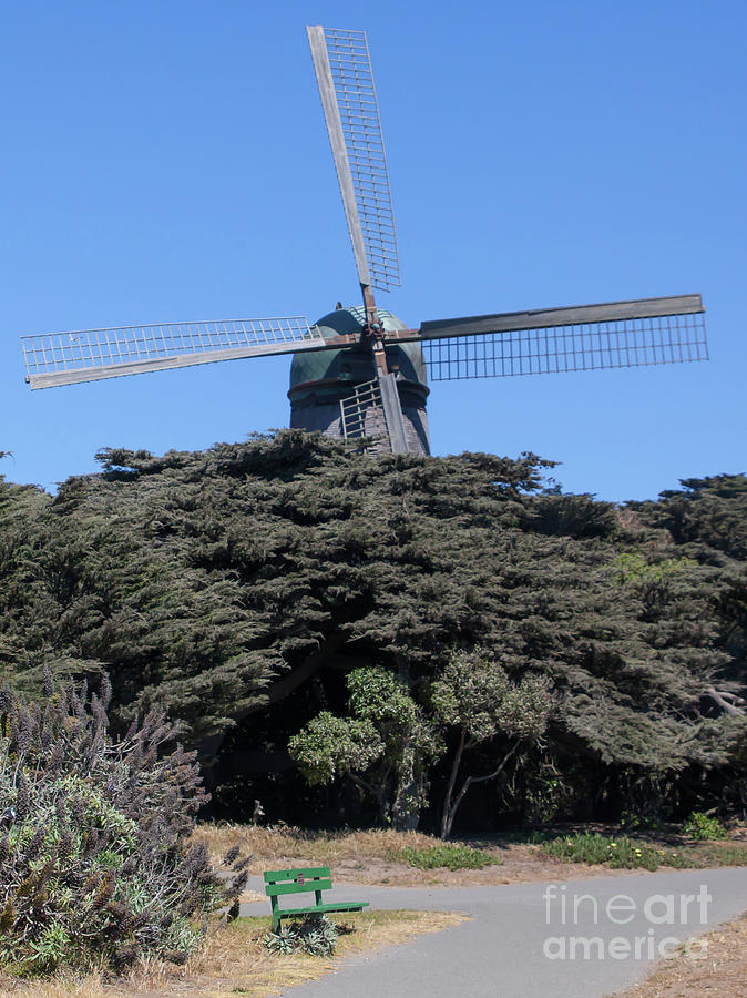 The Dutch Windmill San Francisco Golden Gate Park San Francisco California 5D3254 by San Francisco Art and Photography