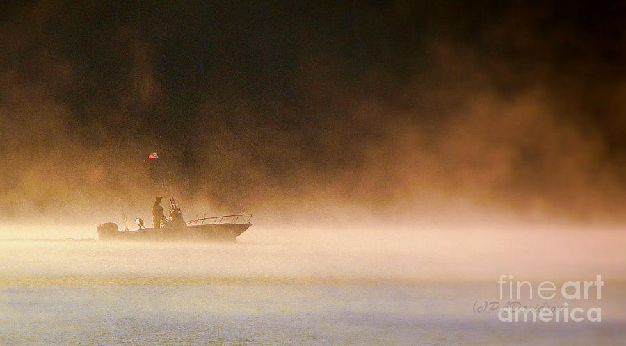 The Early Bird Gets The Fish Photograph by Patricia L Davidson
