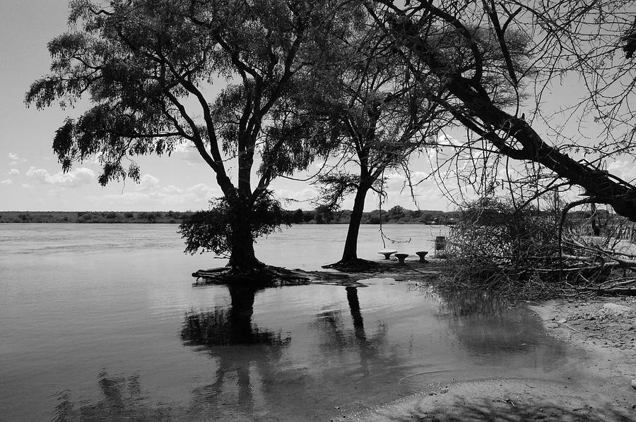 Zambezi River Photograph - The Easy Zambezi by Tess Haun