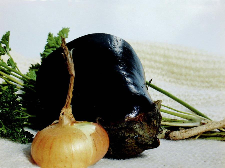 The Eggplant and the Onion by Miriam Kalb