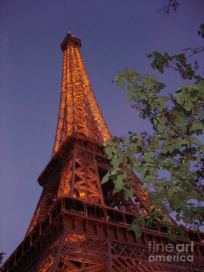 Tower Photograph - The Eiffel Tower Aglow by Nadine Rippelmeyer