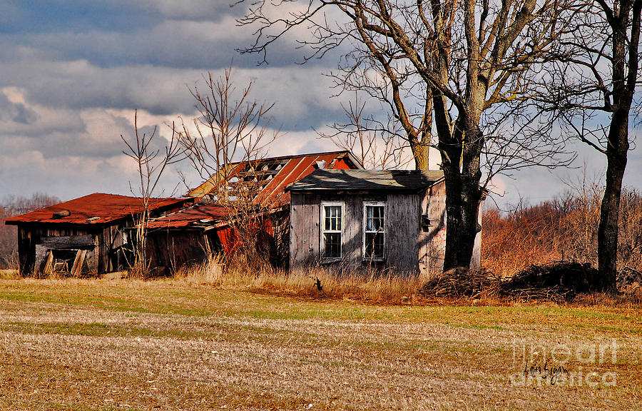 Landscape Photograph - The End Of Days by Lois Bryan