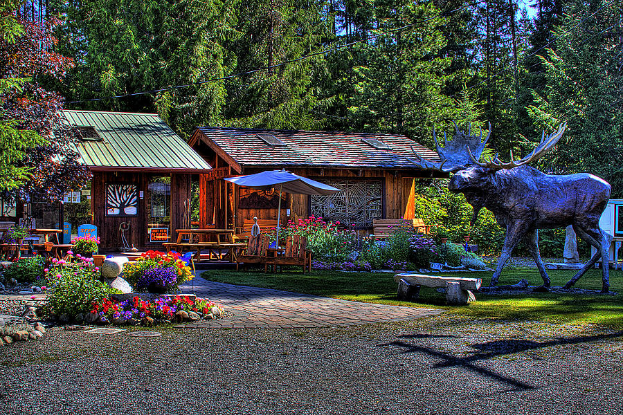 Priest Lake Photograph - The Entree Gallery II by David Patterson