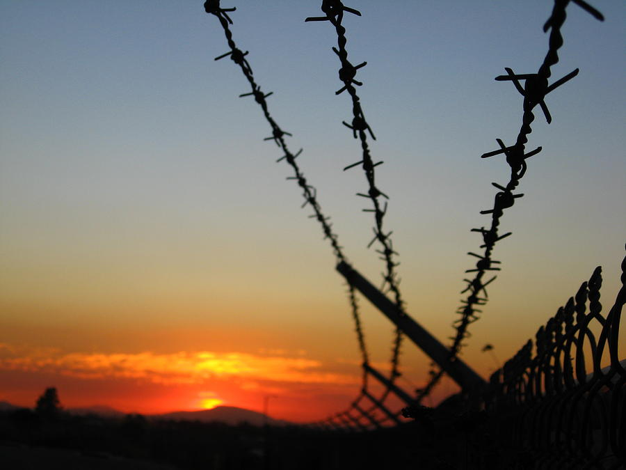 Barbed Wire Photograph - The Escape by Ashley Cauvel