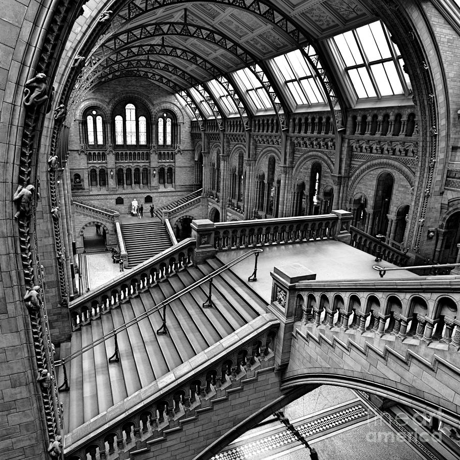 Natural Photograph - The Escher View by Martin Williams