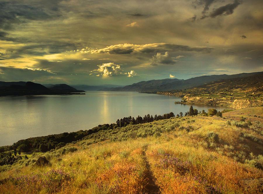 Lake Photograph - The Evening Calm by Tara Turner