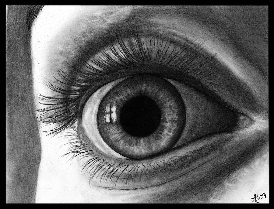 Eye Drawing - The Eye With The Long Eyelashes by Alycia Ryan