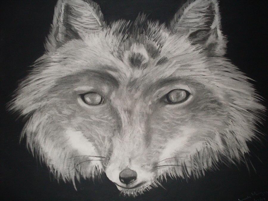 Fox Drawing - The Face Of A Fox by Samanta Munguia
