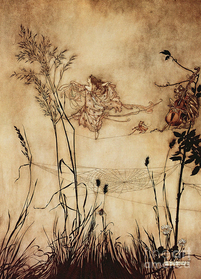 Woman Drawing - The Fairys Tightrope From Peter Pan In Kensington Gardens by Arthur Rackham