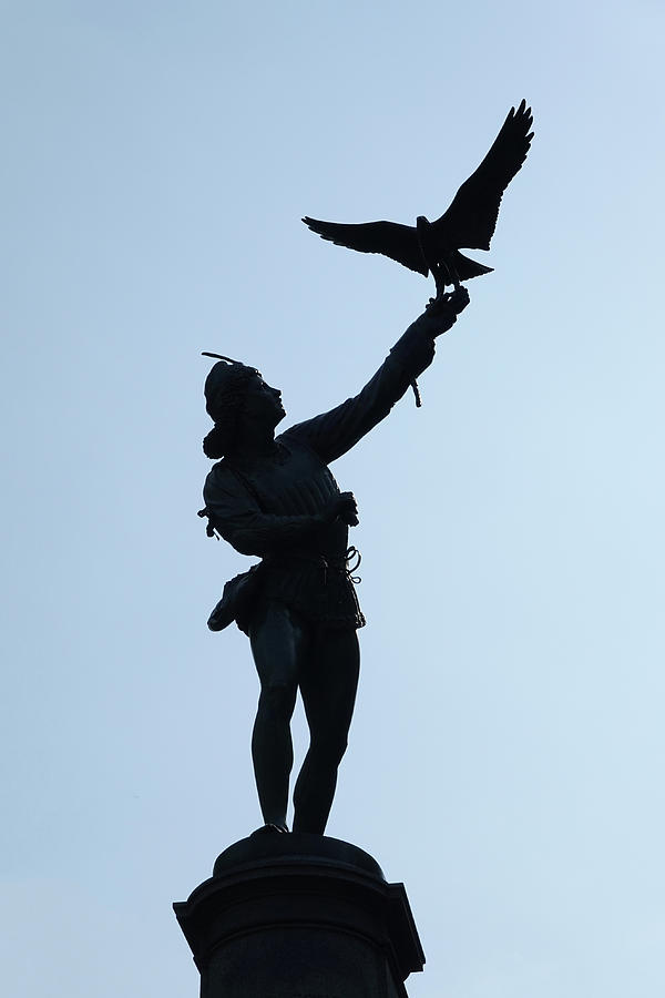 The Falconer by Cornelis Verwaal