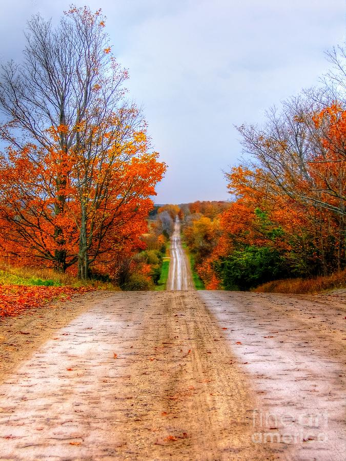 Fall Photograph - The Fall Road by Michael Garyet