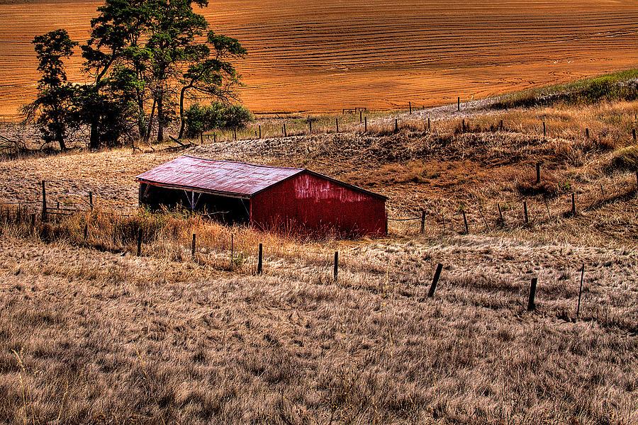 Landscape Photograph - The Farm by David Patterson