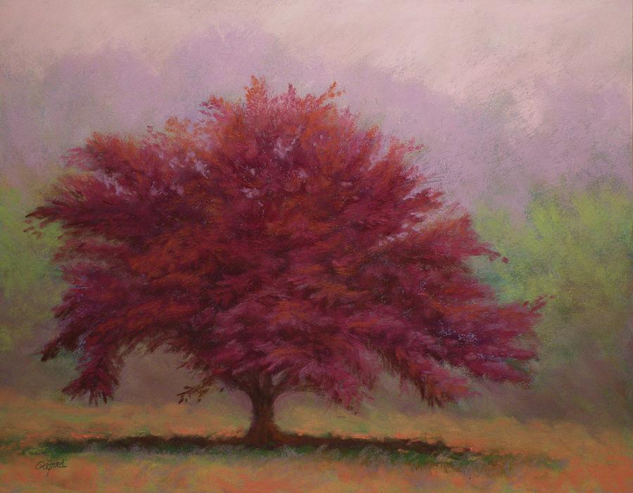 Pastel Painting - The Feather Tree by Paula Ann Ford