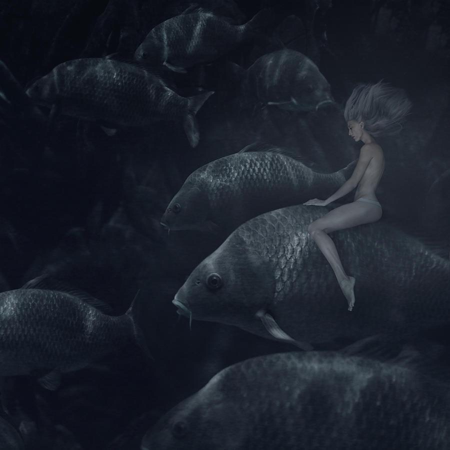 The Fish Rider Photograph by Anka Zhuravleva