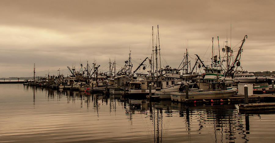 The Fishing Fleet by Tony Locke
