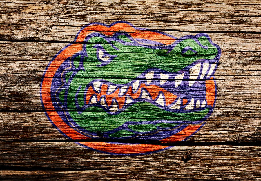 Florida Gators Football Mixed Media - The Florida Gators by Brian Reaves