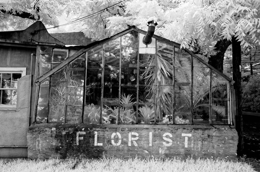 Florist Photograph - The Florist by Sander Hunter