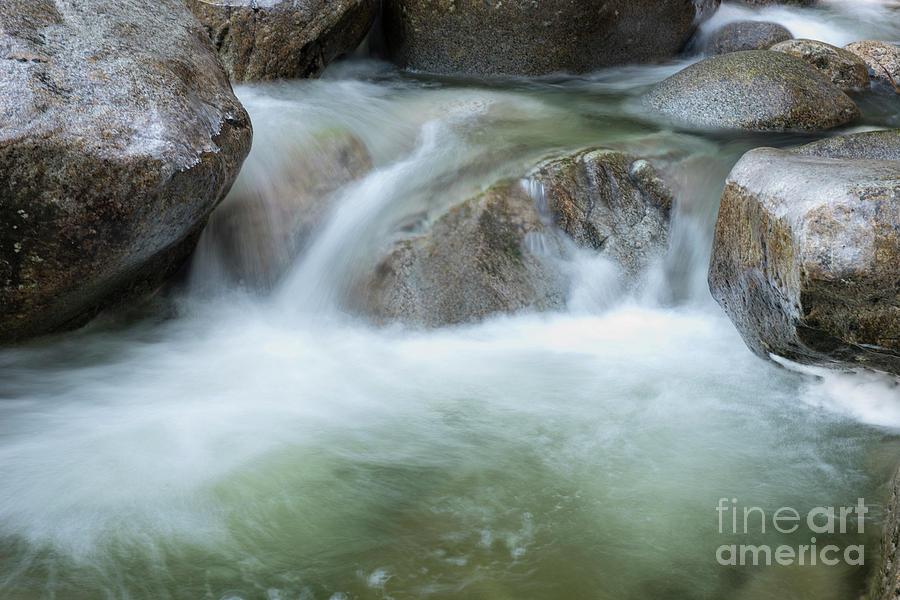 the Flow by Rod Wiens