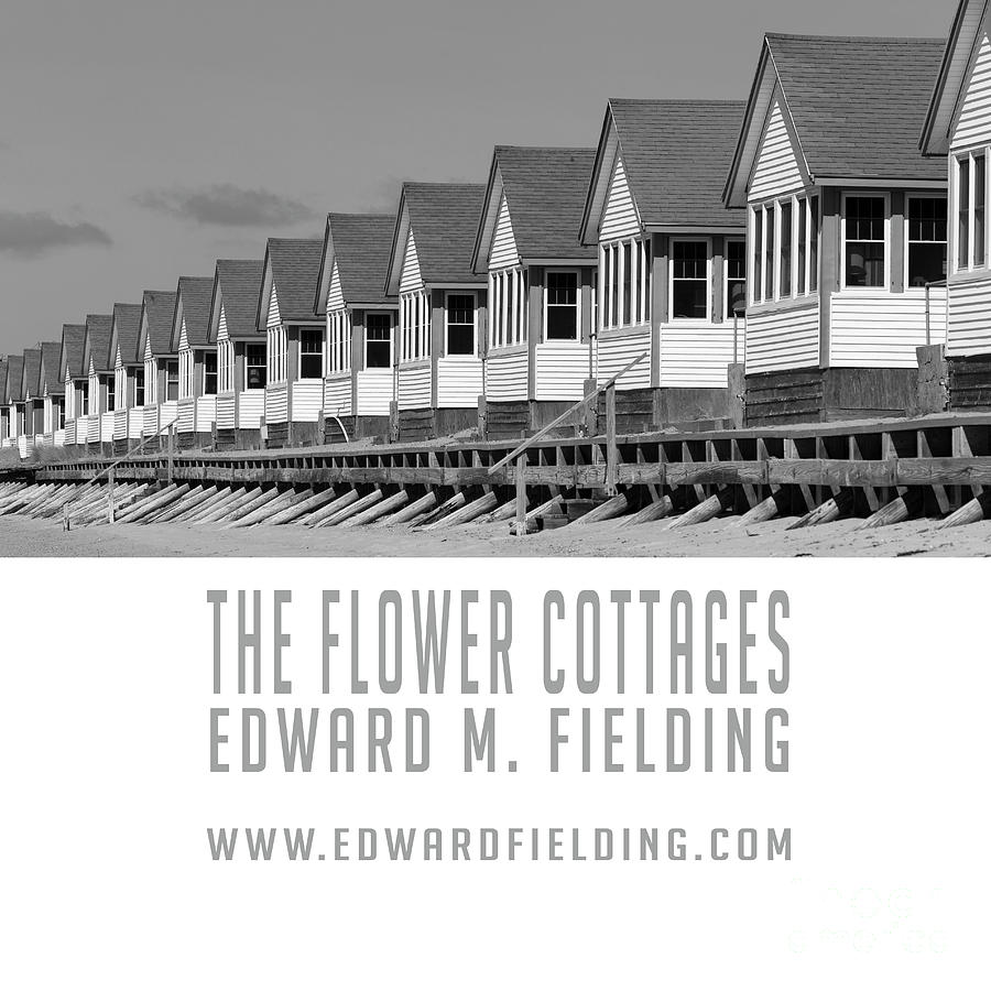Book Photograph - The Flower Cottages By Edward M. Fielding by Edward Fielding