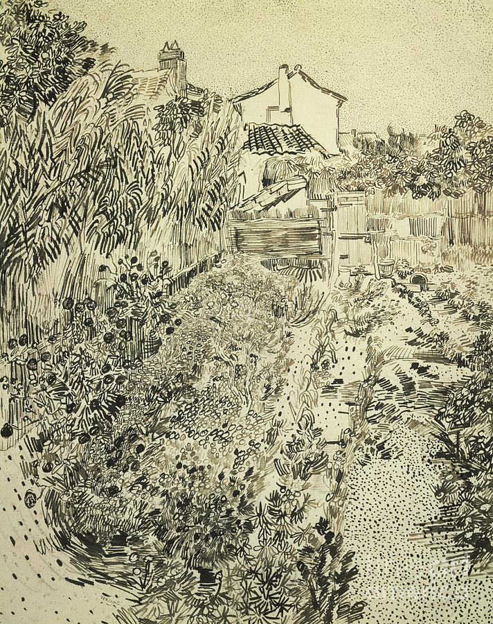 The Flower Garden 1888 Drawing By Vincent Van Gogh