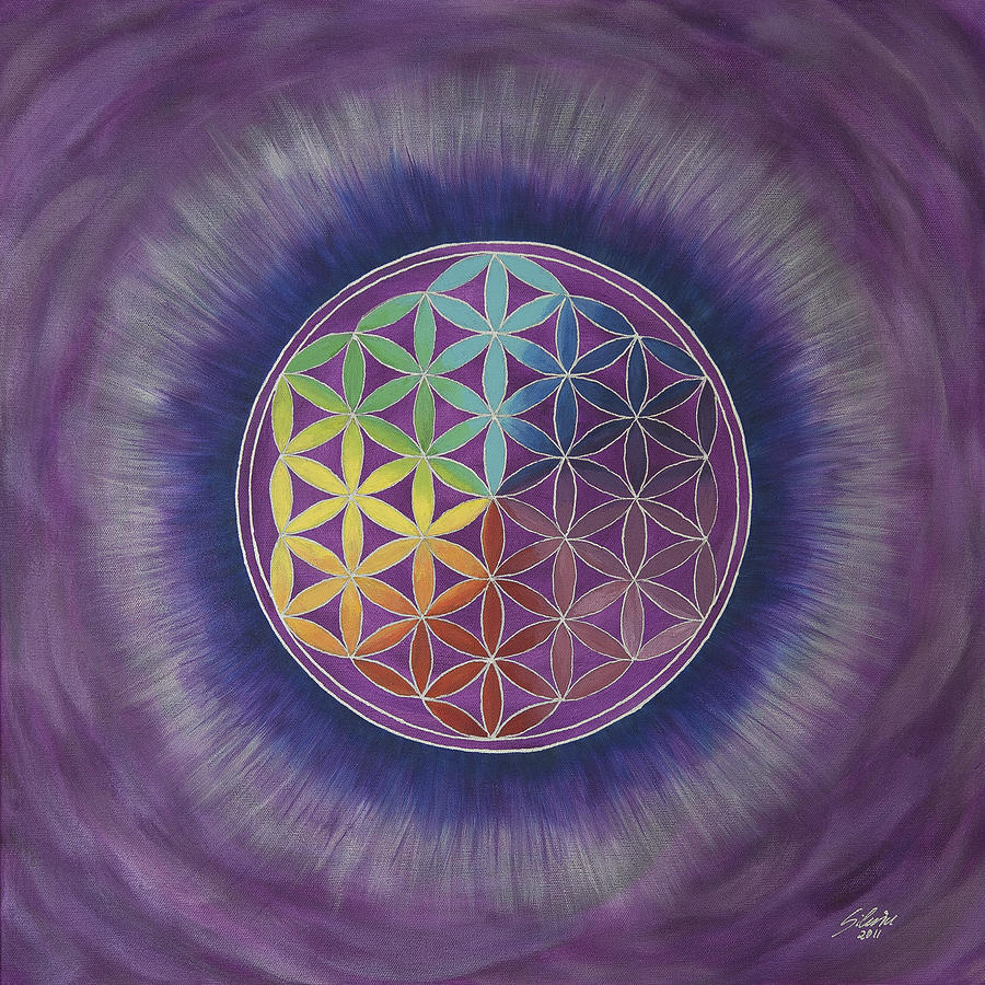 Flower Of Life Photograph - The Flower Of Life by Silvia Flores