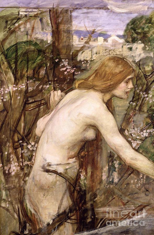 John William Waterhouse Painting - The Flower Picker  by John William Waterhouse