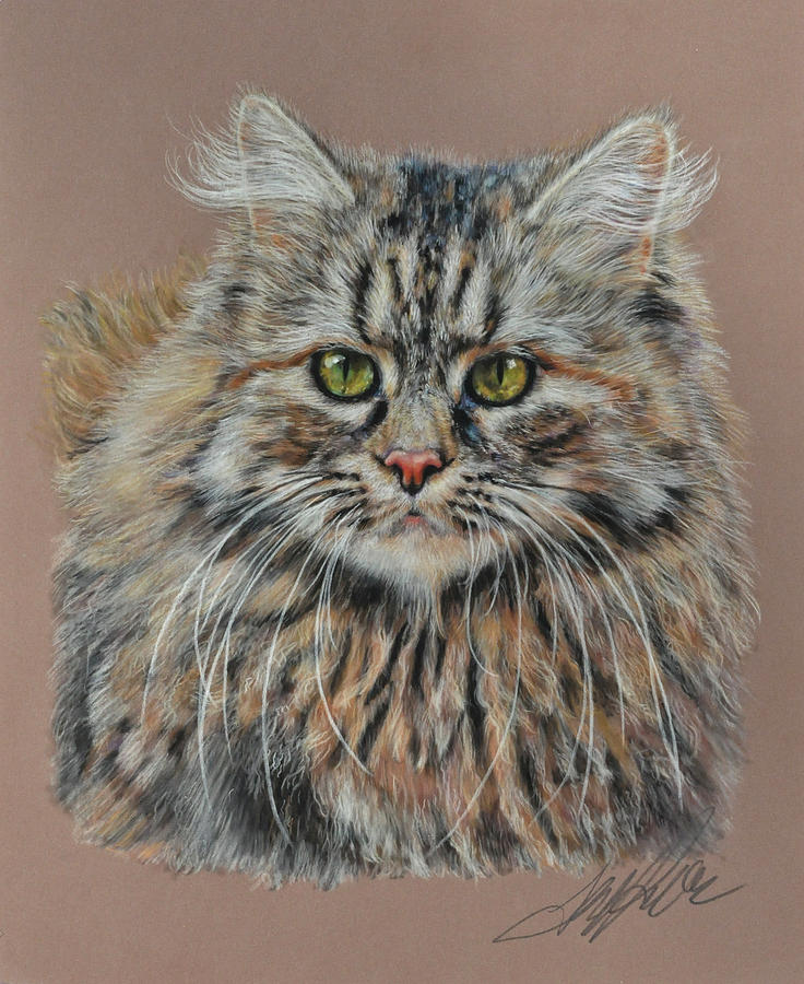 Cat Pastel - The Fluffy Feline by Terry Kirkland Cook