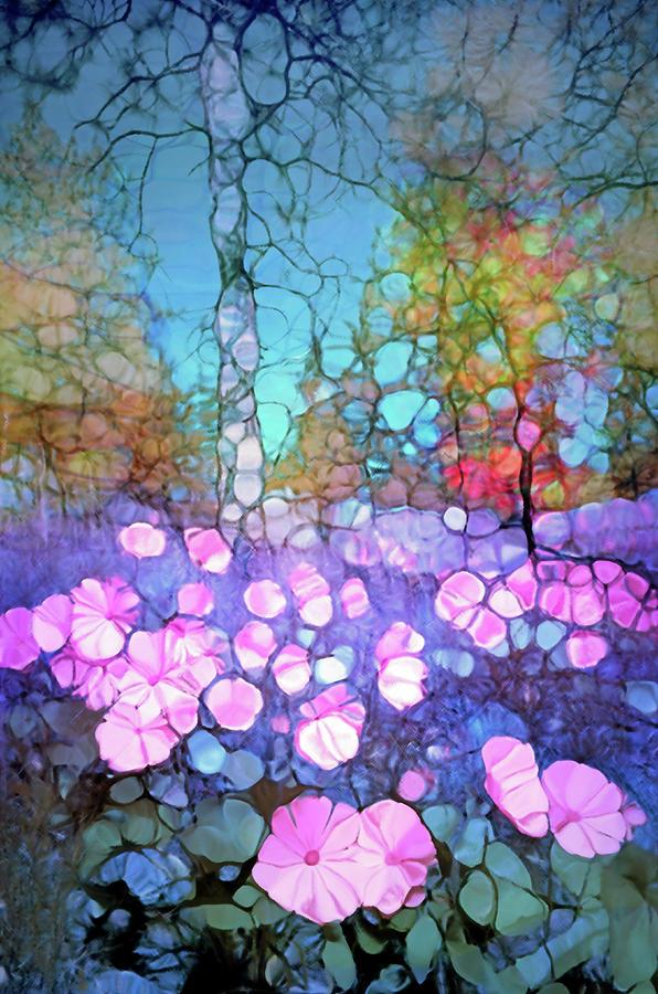 Light Digital Art - The Forest Floor In Bloom by Tara Turner
