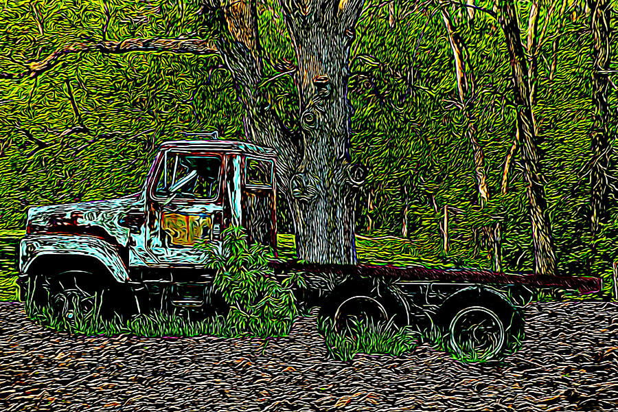 Old Truck Photograph - The Forgotten by David Yocum