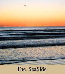 Seascape Photograph - The Four Elements by Cella Neapolitan