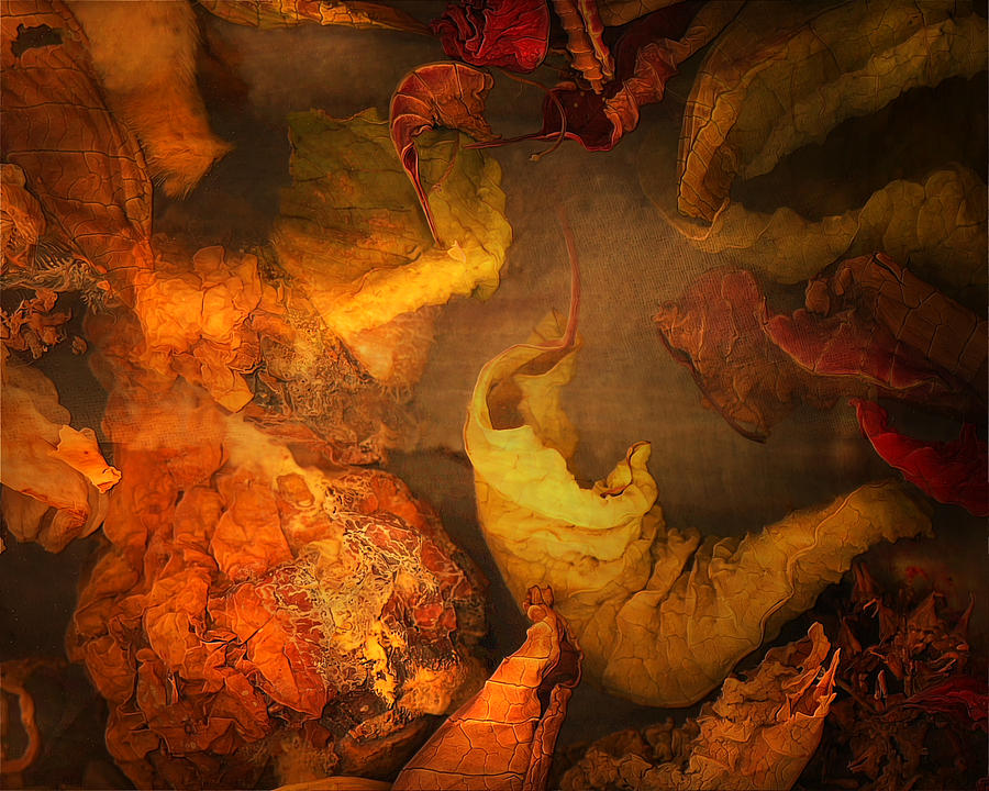 Fall Photograph - The Frail And Singular Fortress Of The Dissolving Self by Peter Ciccariello