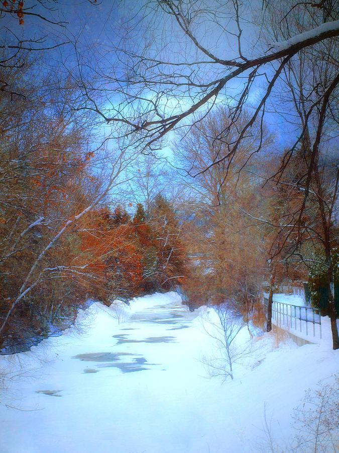 Snow Photograph - The Frozen Creek by Tara Turner