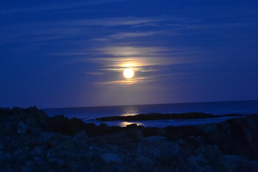 The Hunter's Moon by Nina-Rosa Duddy
