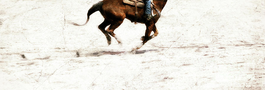 Horse Photograph - The Galloping  by Steven Digman
