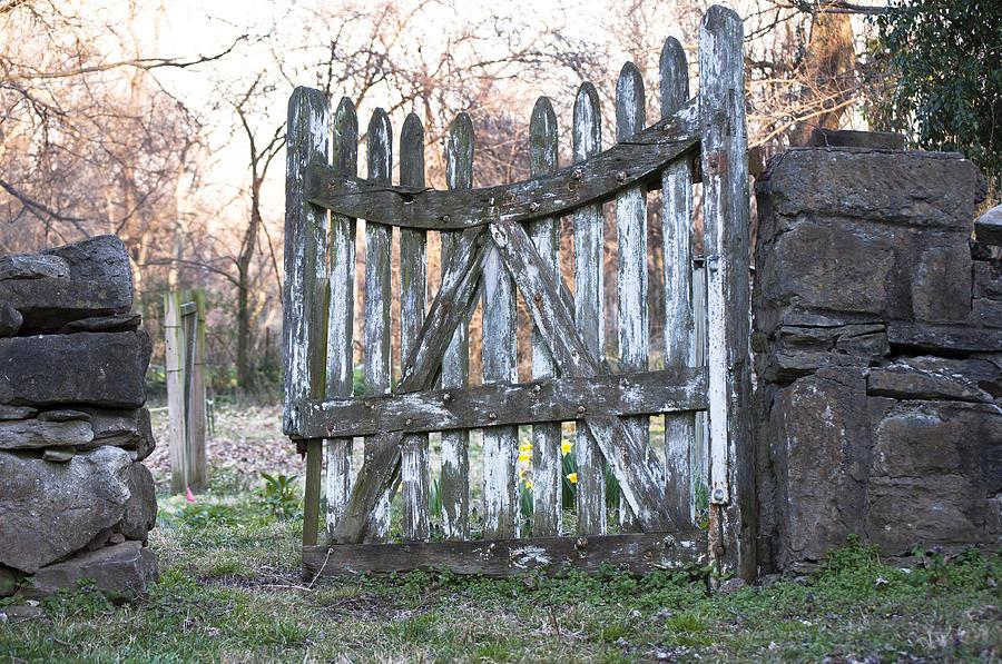 Gate Photograph - The Garden Gate by Lisha Donald