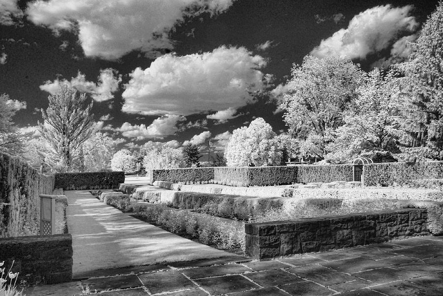 Infrared Photograph - The Gardens In Ir by Michael McGowan