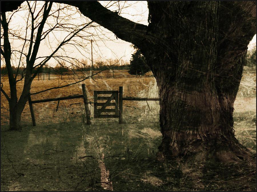 The Gate by Michael L Kimble