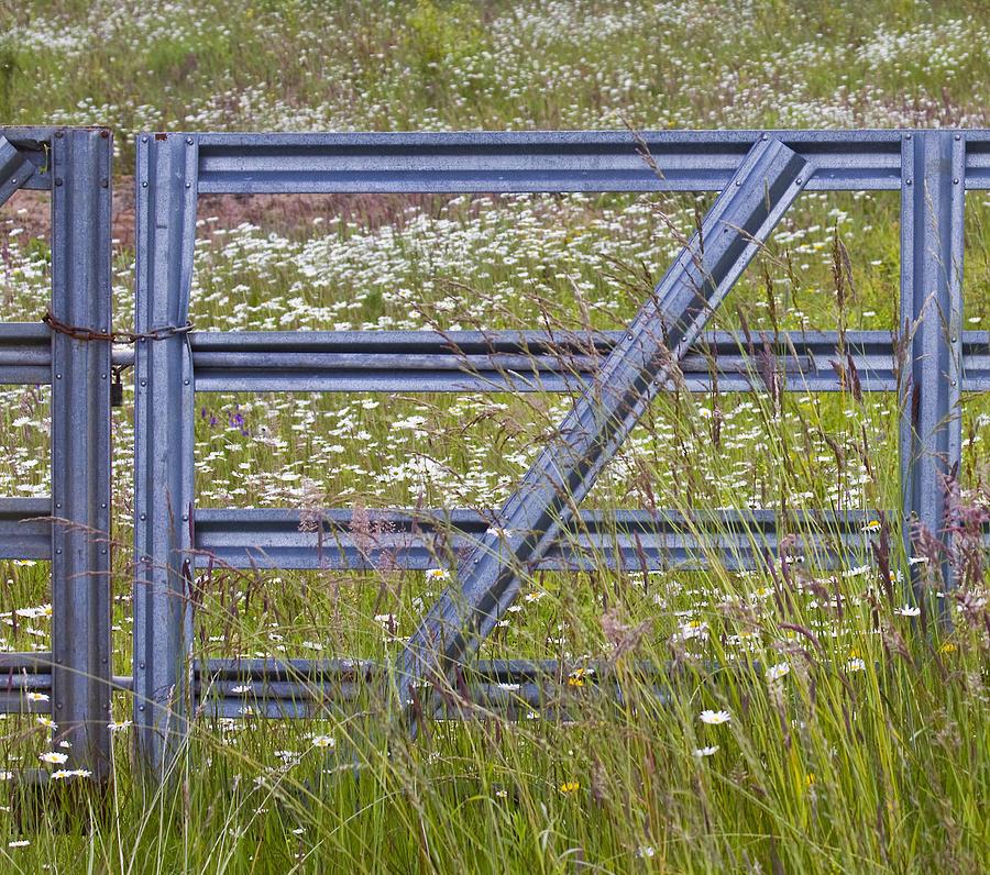 Gate Photograph - The Gate by Rebecca Cozart
