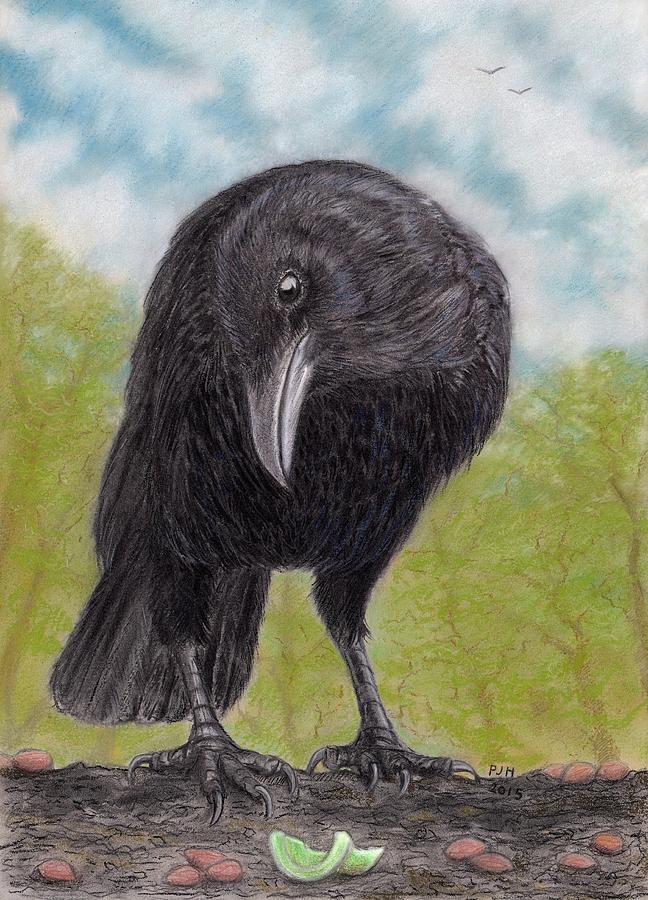 Днем, продажа открытка худ ворона с аттестатом зрелости
