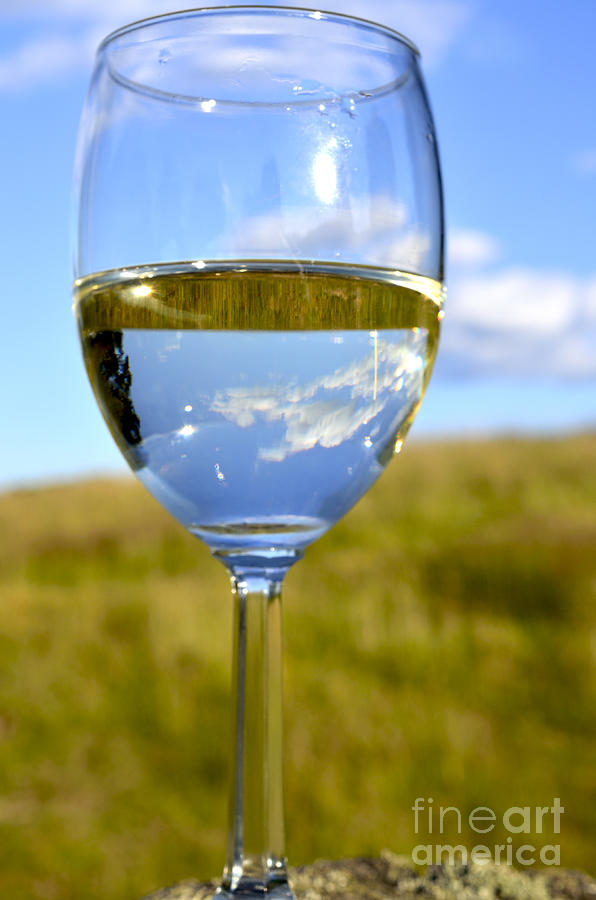 Pinot Grigio Photograph - The Glass Is Half Full by Thomas R Fletcher