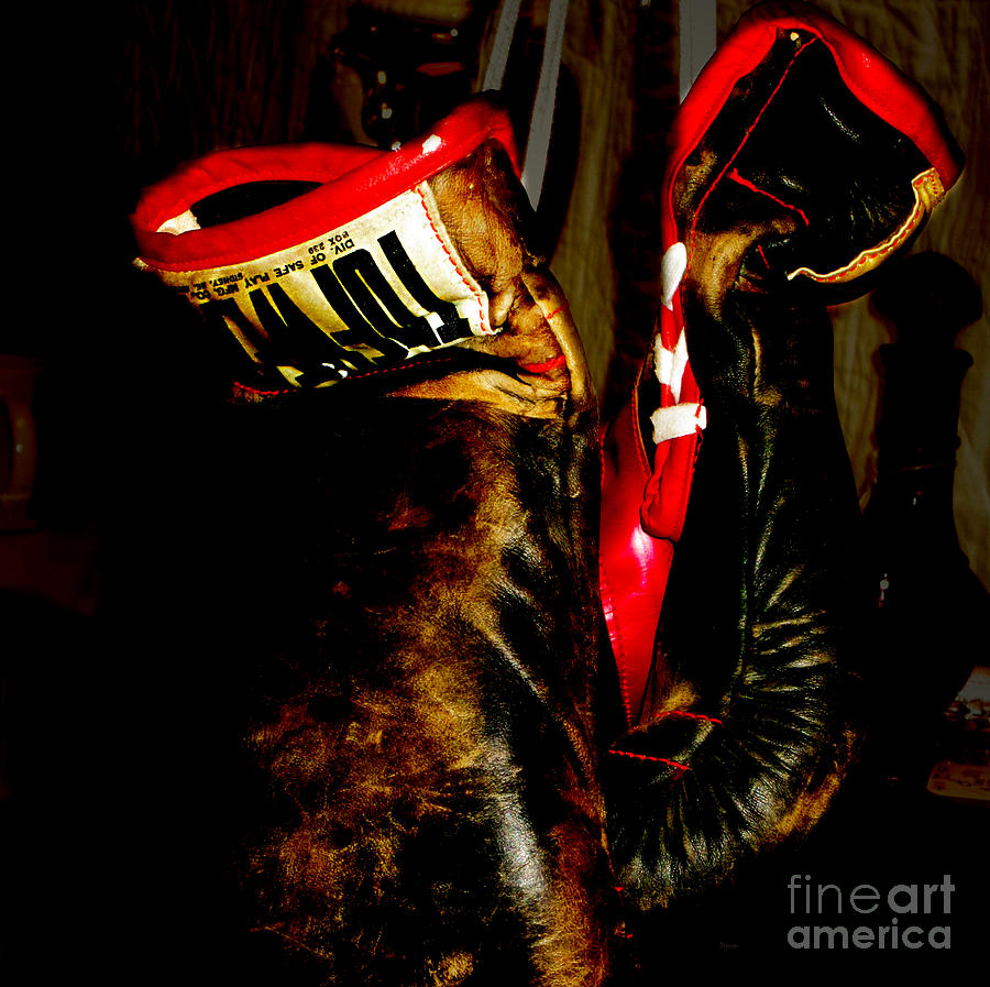 Boxing Photograph - The Gloves by Steven Digman