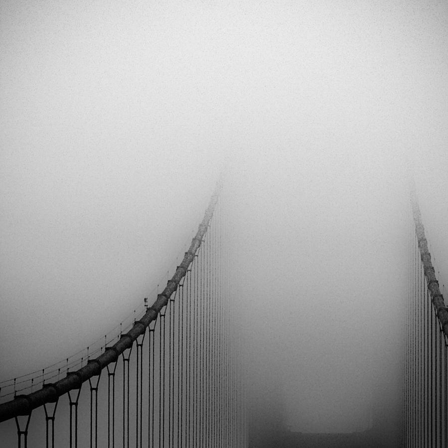 San Francisco Photograph - The Golden Gray by Michael Mancini